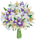 k2nu9q-bouquet-transparent-picture